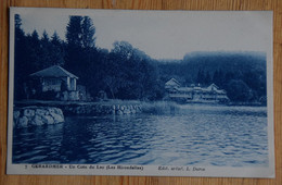 88 : Gérardmer - Un Coin Du Lac - Les Hirondelles - Colorisée En Bleu - (n°19275) - Gerardmer