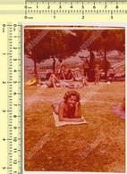 REAL PHOTO, SWIMSUIT WOMAN LYING ON GRASS ON BEACH, FEMME EN MILLIOT DE BAIN  PLAGE, ORIGINAL PHOTO - Unclassified