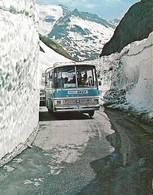 73 - SAVOIE - COL DE L'ISERAN 2770 Mètres - BUS AUTOBUS AUTOCAR SETRA SNCF - CLICHÉ CASTELLAN - Buses & Coaches