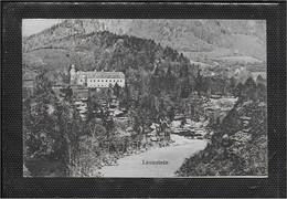 AK 0638  Leonstein ( Schloss ) Um 1913 - Steyr