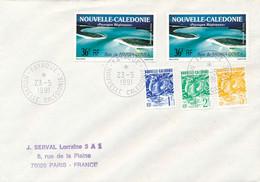 """Nouvelle Calédonie Obl """" FAYAOUE 23/5/1991  """" OUVEA  Iles Loyauté Sur Lettre > France - Cartas"""