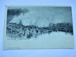 VITICULTURE - Nuages Artificiels - Edition Ch. Colas Et  Cie A Cognac -en 1901 - Tbe - Cognac