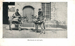 Marchands Flamands De Lait Battu   ANE DONKEY EZEL ESEL MULES Donkeycollection - Ohne Zuordnung