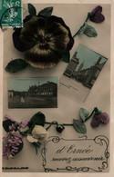 D'Ernée Recevez Ce Souvenir (Mayenne) Multivues Et Pensée - Edition Bellon Blin - Carte Colorisée 1910 - Gruss Aus.../ Gruesse Aus...