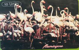 TANZANIE  -   Phonecard   - Flamingos  -  10 Unités - Tanzania