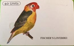 TANZANIE  -   Phonecard   -  Fischer's Lovebird  -  40 Unités - Tanzania