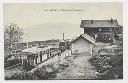 SALEVE STATION DES TREIZES ARBRES + TRAIN - Autres Communes