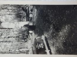 Photo De 2 Voitures Ancienne Around Et Peugeot 203 à L'orée De La Forêt D'Avaise (71). - Automobiles