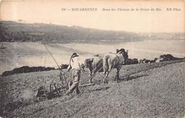 DOUARNENEZ  -  Dans Les Champs De La Gréve Du Ris ( Scene Agriculture : Le Labour ) - Douarnenez