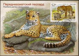 2021-2722 Maximum Card Canc Krasnodar Russia EUROPA CEPT National Endangered Wildlife.Fauna:Big Cats:The Persian Leopard - Cartoline Maximum