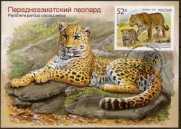 2021-2722 Maximum Card Canc Stavropol Russia EUROPA CEPT National Endangered Wildlife.Fauna:Big Cats:The Persian Leopard - Cartoline Maximum