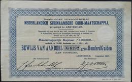 SURINAAMSE Goudmaatschappij 1907 - Afrika