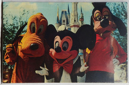 Mickey Pluto Goofy Welcome To The Magic Kingdom Walt Disney World #01110236 Blue Back Florida Flag Not Posted NM - Disneyworld