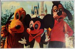 Mickey Pluto Goofy Welcome To The Magic Kingdom Walt Disney World #01110236 Black Back  Florida Flag Not Posted NM - Disneyworld