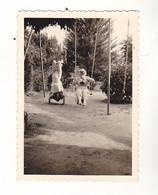 PHOTO 8 X 6   ENFANTS FAISANT DES ACROBATIES  SUR LA BALANCOIRE - Unclassified