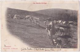 09. SAURAT. Col De Port. La Baccade - Other Municipalities