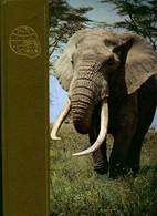 Le Royaume Des Animaux Tome VII : Dia-Ent De Maurice Burton (1972) - Animaux