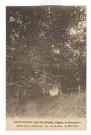 G157 - BOLBEC - Château De Roncherolles - Institution NOTRE DAME - Un Coin Du Parc - Le Petit Bois - Bolbec