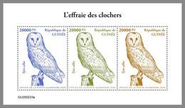 GUINEA REP. 2020 MNH Barn Owl Schleiereule Effraie Des Clochers M/S - OFFICIAL ISSUE - DHQ2104 - Owls