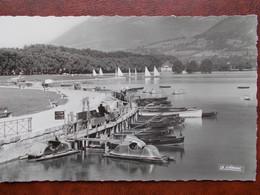 74 - ANNECY - Un Coin Du Lac. (Voile - Barques Et Pédalos) CPSM - Annecy