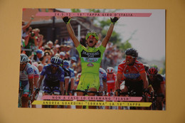 CYCLISME: CYCLISTE : ANDREA GUARDINI - Ciclismo