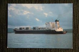 """Le """" FORT DESAIX """", De La Compagnie Générale Maritime Mis En Service En 1981 Sur La Ligne Des ANTILLES. - Passagiersschepen"""