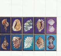 PALAU - Faune, Coquillages - B32/41 - MNH - 1984 - Palau