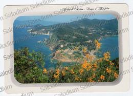 ISOLA D'ELBA - Capo D'enfola   -  XXL CARD - Big Format - Zonder Classificatie