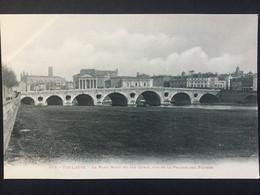 TOULOUSE - Le Pont Neuf Et Les Quais, Vus De La Prairie Des Filtres - Toulouse