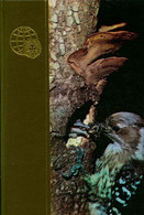 Le Royaume Des Animaux Tome XIX : Phalanger Vulpin-Podarge De Maurice Burton (1969) - Animaux