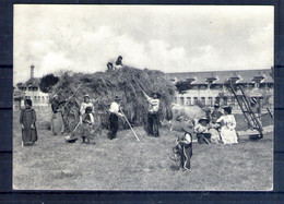 Carte Moderne. Les Fenaisons - Landwirtschaftl. Anbau