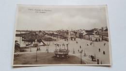 ANTIQUE PHOTO  POSTCARD PORTUGAL FARO - AVENIDA DA REPUBLICA UNUSED - Faro
