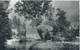 Balen-Neet - Watermolen - Edit. Drukker Mandonx, Balen-Neet - 1955 - Balen