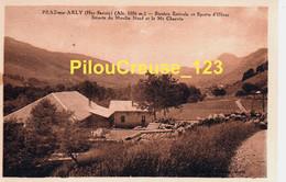 """74 Haute Savoie - PRAZ Sur ARLY - """" Scierie Du Moulin Neuf E Le Mont Charvin Station Estivale Et Sports D'Hiver """" - RARE - Sonstige Gemeinden"""