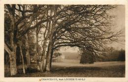 Chanceaux Près Loches * 2 Cpa * Château Parc Jardin - Altri Comuni