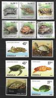 Tortues - Schildkröten