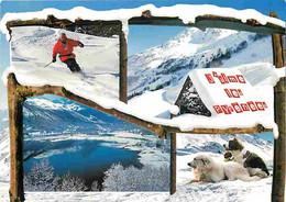 Animaux - Chiens - Saint Bernard - Pyrénées - Multivues - Montagnes - Hiver - Neige - Chien Des Pyrénées - CPM - Voir Sc - Perros
