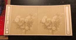 Photo Stéréo Vers 1880  À.Braun A Dorbach Haute Rhin 68 -  Fleurs Dans Un Vase    Très Animé - Stereoscoop