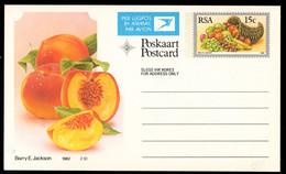 SOUTH AFRICA (1982) Peach. Cornucopia. 15c Airmail Postal Card. - Autres
