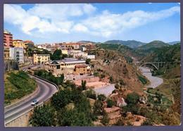 °°° Cartolina - Catanzaro Panorama Ponte Di Siano Nuova (l) °°° - Catanzaro