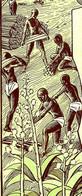 1928 ENTREPRISES COLONIALES V. HISTORIQUE SISALERAIES ET CARBURANTS AFRICAINS Dakar Sénégal SUPERBE GRAPHISME - Afrika