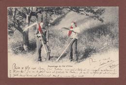 Valais / Wallis - VAL D'ILLIEZ - Paysannes Et Leurs Faux - 1901 - VS Valais