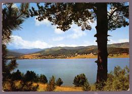 °°° Cartolina - Bellezze Di Calabria La Sila Lago Ampollino Viaggiata (l) °°° - Catanzaro