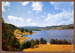 °°° Cartolina - Bellezze Di Calabria La Sila Lago Arvo Viaggiata (l) °°° - Catanzaro