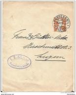 12 - 93 - Entier Postal  Bande De Journal Rapperswil 1917 - Enteros Postales