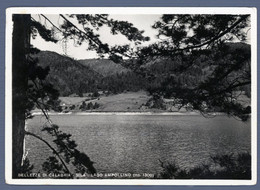 °°° Cartolina - Bellezze Di Calabria Sila Lago Ampollino Viaggiata (l) °°° - Cosenza
