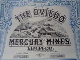 ESPAGNE - THE OVIEDO MERCURY MINES - TITRE DE 1 ACTION DE 2 £ - LONDRES 1907 - Unclassified