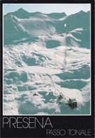 PASSO DEL TONALE - STAZIONE FUNIVIA PASSO PARADISO CON PISTE DELLA PRESENA - IMPIANTI DI RISALITA - SCI / SKI - 1996 - Trento