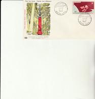 Z1 - Enveloppe Premier Jour  Satellite D1  MATA URU - Storia Postale