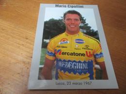 Cipollini Mario - Cycling
